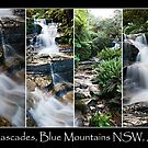 Leura Cascades in The Blue Montains - Collage by Ben Shaw