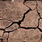 Cracked earthen tile by SunnyJames