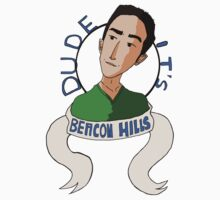 [Dude It's Beacon Hills] by thescudders