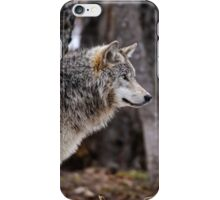 Timber Wolf in trees iPhone Case/Skin