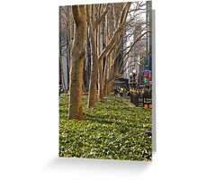 Bryant Park Trees Greeting Card