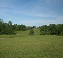 Rolling Green Hills by mrstrish