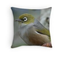 Handsome is the word! - Silvereye - NZ - Southland Throw Pillow