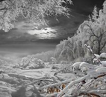 Kingdom Of Snow by Igor Zenin