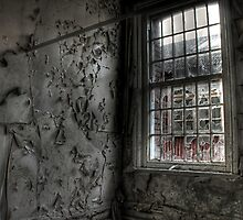 Decay in all its forms by Richard Shepherd
