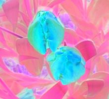Yet to Open Green Tulip Duo by Mike Solomonson