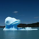 Donald Duck - the iceberg by Peter Zentjens