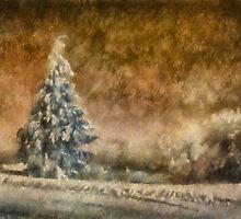 Winter Wonder by Lois  Bryan