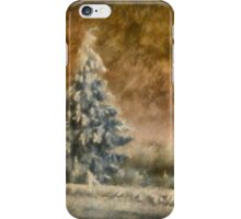 Winter Wonder iPhone Case/Skin