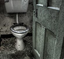 Obligatory Toilet by Richard Shepherd