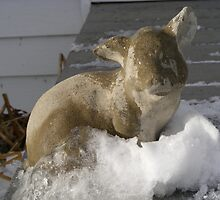 Pig on Ice by K Gilks