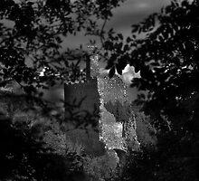 Castle in Rhuan  by Bartosz  Modrzejewski