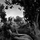 Sedona in Black &amp; White by Daniel J. McCauley IV