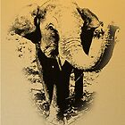 Elephant by Ian Batterbee