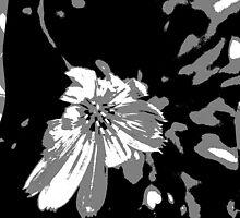 Flower Art by PPPhotoArt