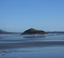 Beach @ Tofino2 by LiTaoRen