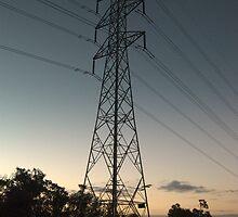 Pylon at  Donvale  by lettie1957