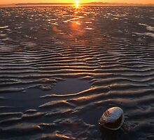 Clamshell Sunset by Ryan Watts