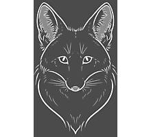 Foxy Stare White Photographic Print