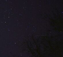 Geminid Meteor Shower 2014 by Otto Danby II