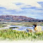 Connemara, Co.Galway,  Ireland by Michael Walsh