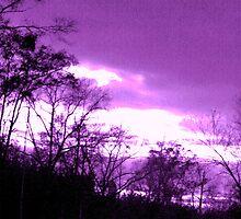 Purple sky by mel1forjon