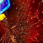 Phosphorescence by Genevieve  Brown
