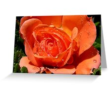 Glitter Petals - Rose Flower - NZ Greeting Card