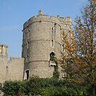 Windsor Castle  by CreativeEm