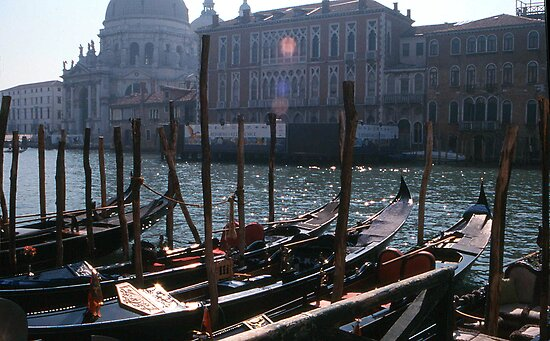First light, Venice by Maggie Hegarty