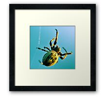 Web Site Framed Print