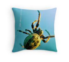 Web Site Throw Pillow