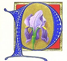 Illuminated initial by Mark Calderwood