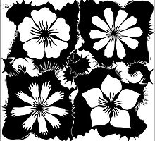 B&W flowers by VioDeSign