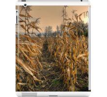 It's a Long Winter iPad Case/Skin