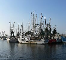 Shrimp Boats by kevint