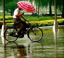 Raining by Hadrien Gelas