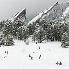 Winter Wonderland by Gregory J Summers