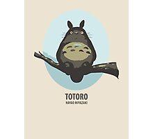 My neighboor Totoro Photographic Print