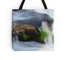 Clinging for dear life Tote Bag