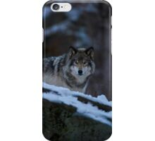 Timber Wolves In Late Evening. iPhone Case/Skin