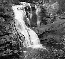 Bald River Cypress Falls by vivianlea