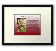 How the Ladybug got its name . . .  Framed Print