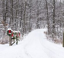 Welcome Home Christmas - Allen County, Indiana by Mike Koenig