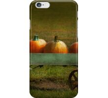 Autumn - Pumpkins - Free ride iPhone Case/Skin