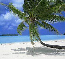 Tahitian Dream by ajtaber