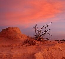 Dusk 1 - Lake Mungo by Hans Kawitzki