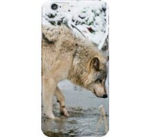 OHHH, That's Cold iPhone Case/Skin