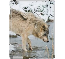 OHHH, That's Cold iPad Case/Skin