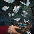 Night Nest by Barbee Teasley